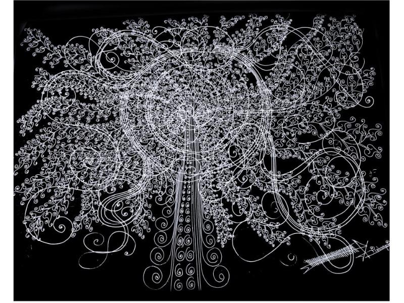 Indian Peacock Tree (Line Art)