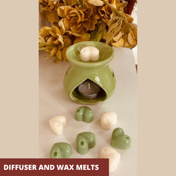 Diffuser and wax melts