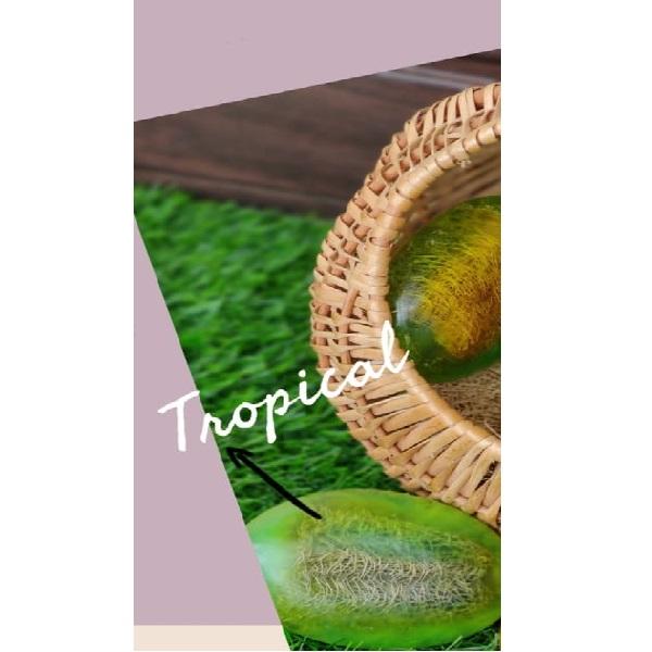 Tropical Exfoliating Bar