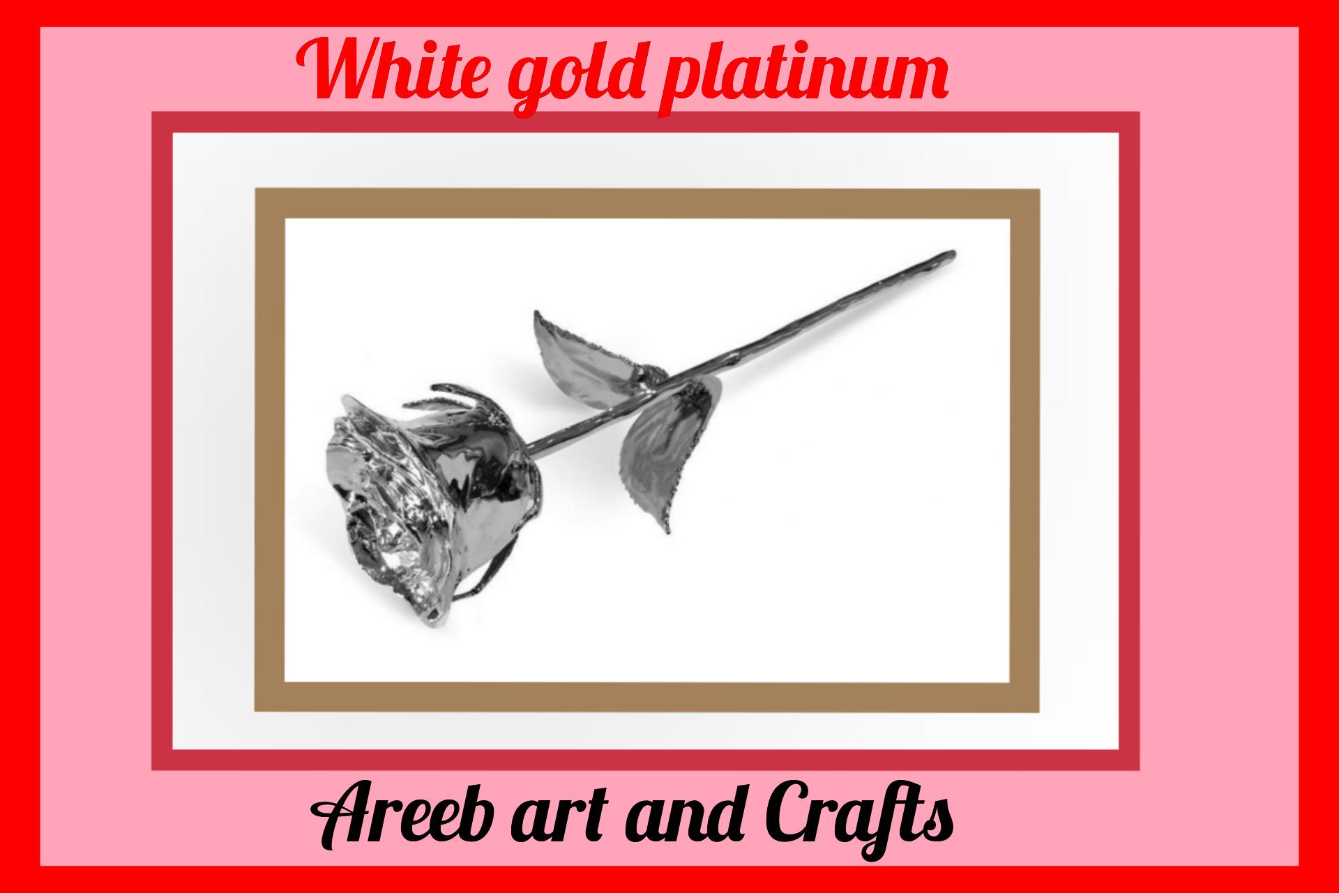 White gold platinum rose